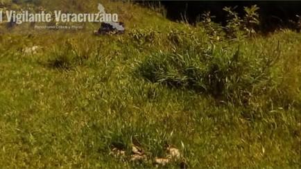 asesinada en huiloapan