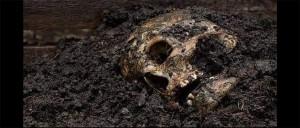 restos humanos en cementerio clandestino