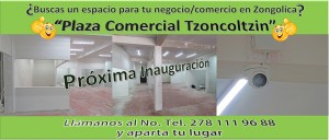 plaza comercial tzoncoltzin zongolica