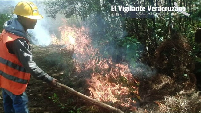 combaten incendio vía terrestre en astacinga