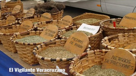 feria de salud inter-cultural en ixhuatlancillo