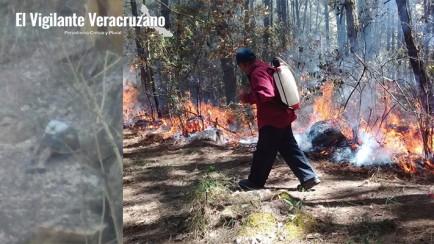 muere en incendio forestal en astacinga