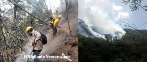 incendio en nogales lleva 5 días activo