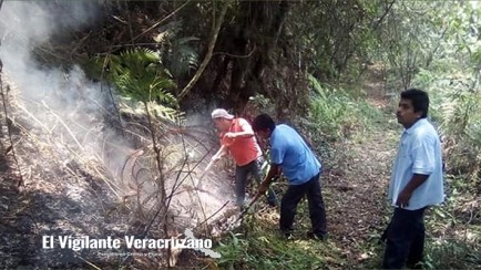 incendios forestales en magdalena