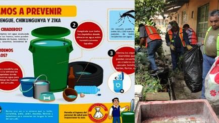 prevención del dengue en nogales