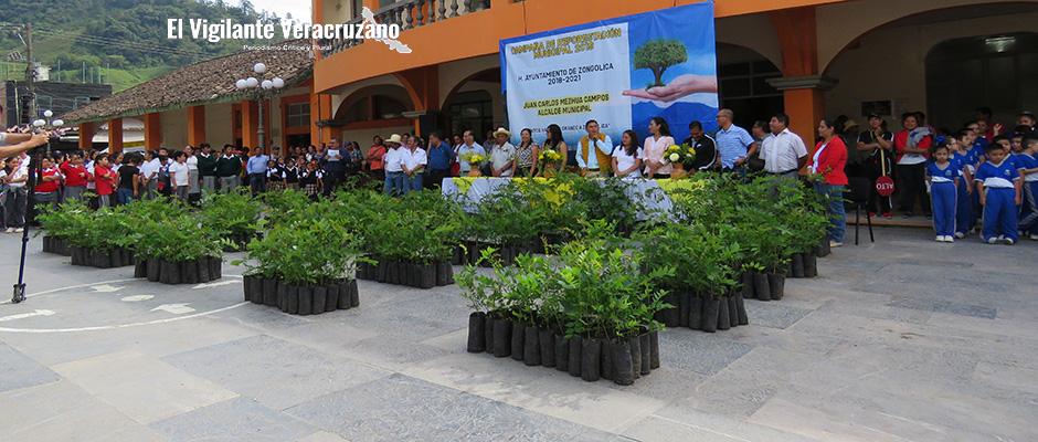 programa de reforestación emergente en zongolica2